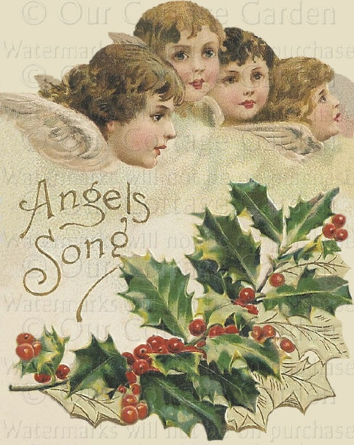 Victorian CHRISTMAS Angel's Song HOLLY | Our Cottage Garden