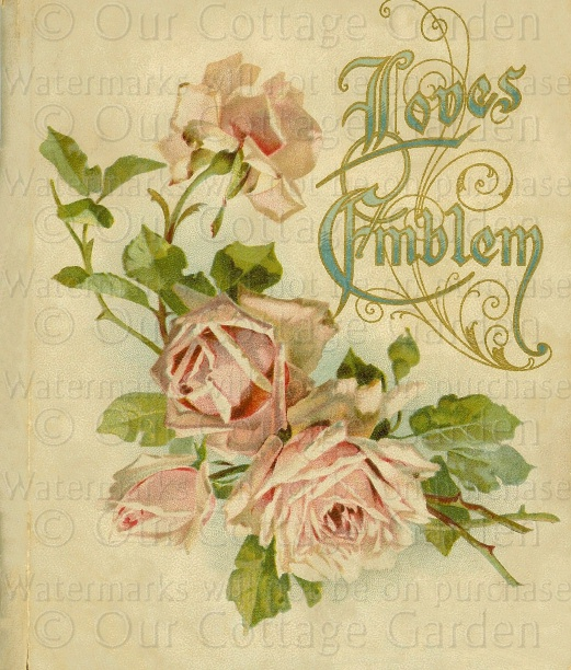 Vintage Flower Book Cover : Victorian floral gift book covers roses our cottage